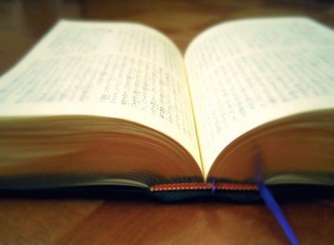 日々の想い(30)「わたしの歩んだ道 信仰・神学・そして教会⑪」