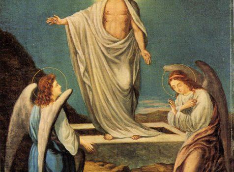 2018年4月 聖書随想(30)「知識は罪ですか?」